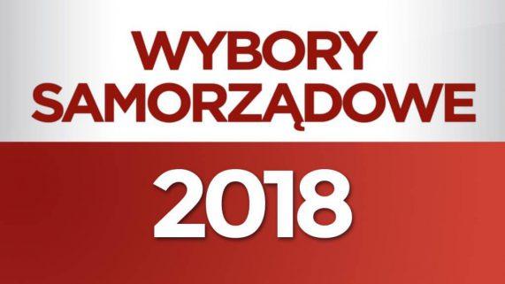 Wybory samorządowe 2018 - Brzeg, powiat brzeski